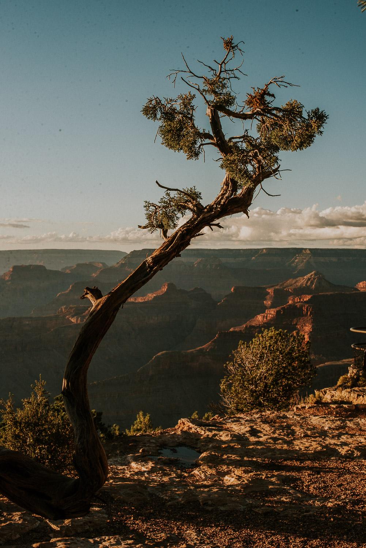 america_family_grand_canyon_arizona_katy_webb_photography_UK26