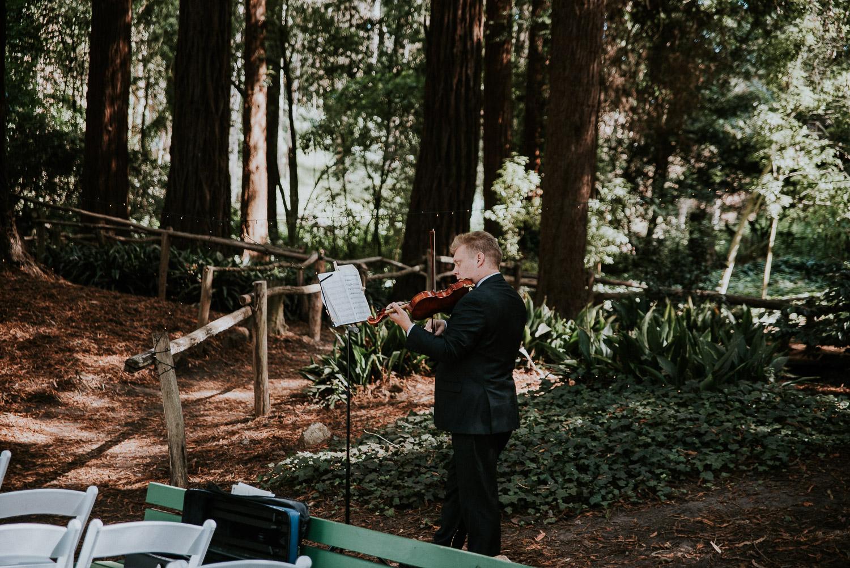 stern_grove_san_francisco_california_america_wedding_katy_webb_photography_UK29