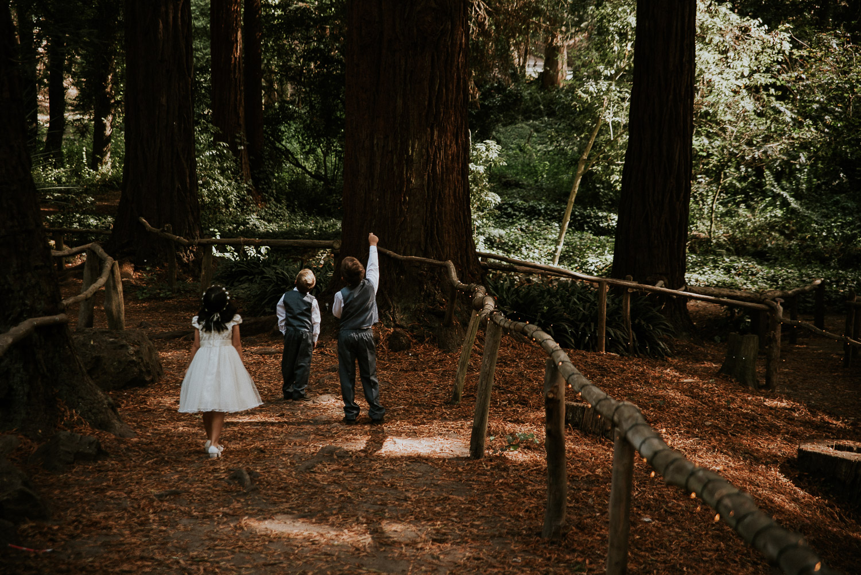 stern_grove_san_francisco_california_america_wedding_katy_webb_photography_UK34