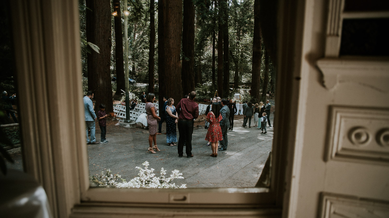 stern_grove_san_francisco_california_america_wedding_katy_webb_photography_UK37