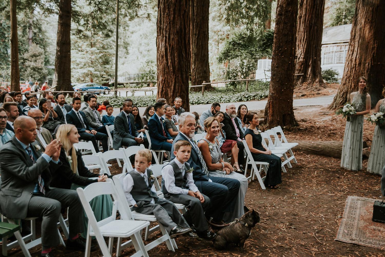 stern_grove_san_francisco_california_america_wedding_katy_webb_photography_UK48