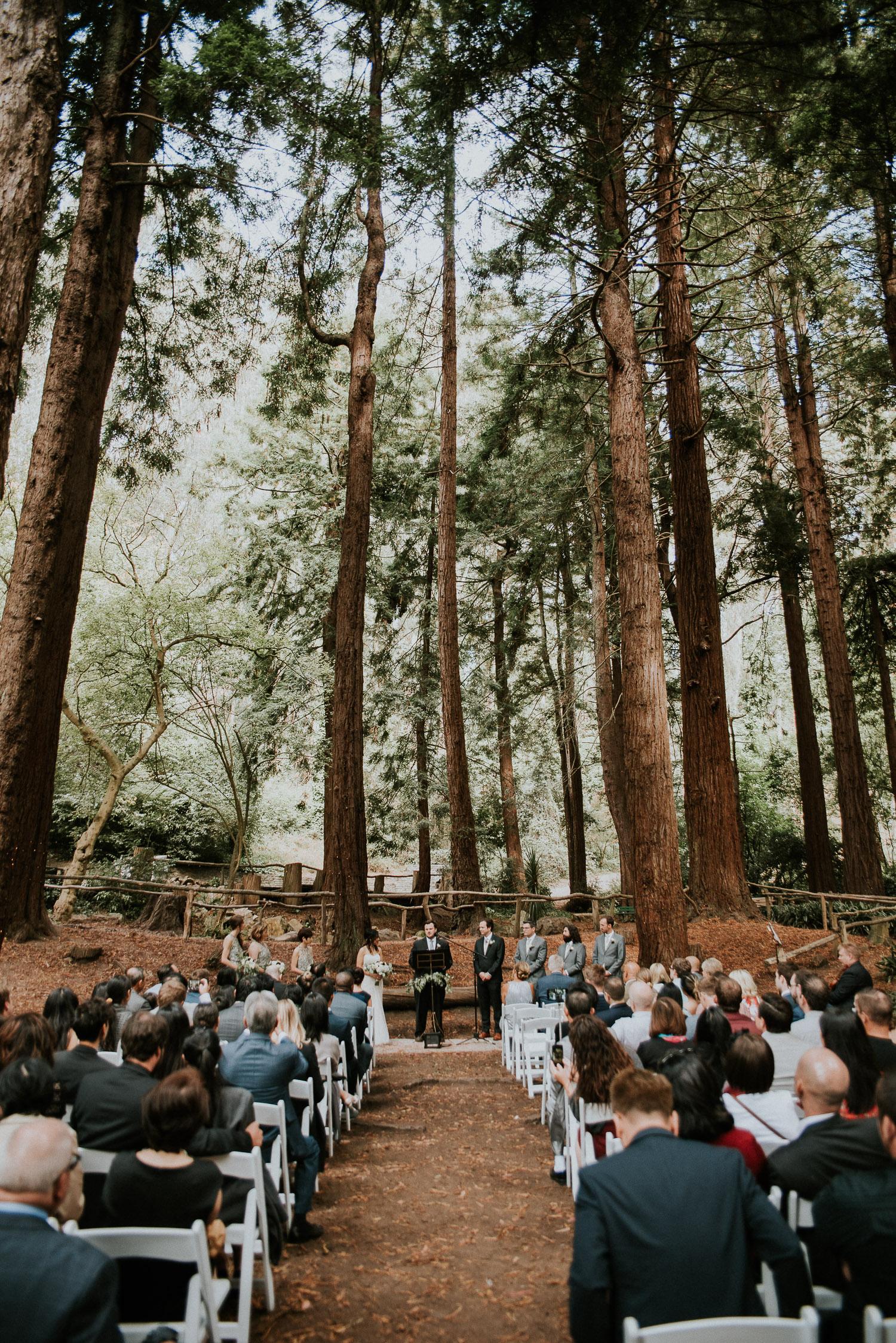 stern_grove_san_francisco_california_america_wedding_katy_webb_photography_UK52