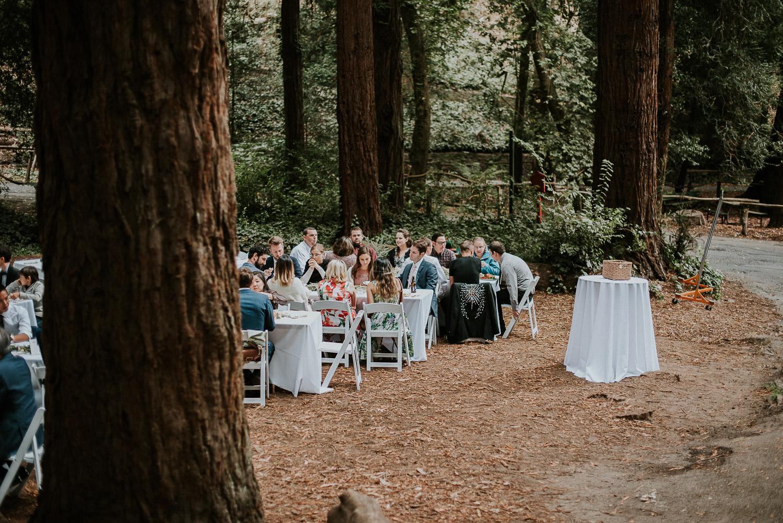 stern_grove_san_francisco_california_america_wedding_katy_webb_photography_UK83