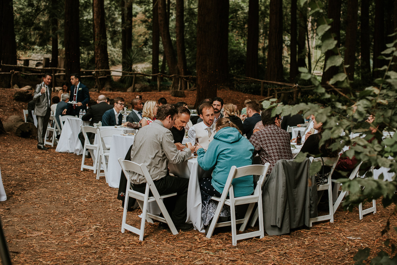 stern_grove_san_francisco_california_america_wedding_katy_webb_photography_UK84