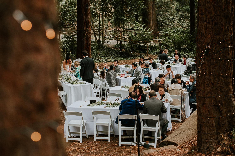 stern_grove_san_francisco_california_america_wedding_katy_webb_photography_UK85
